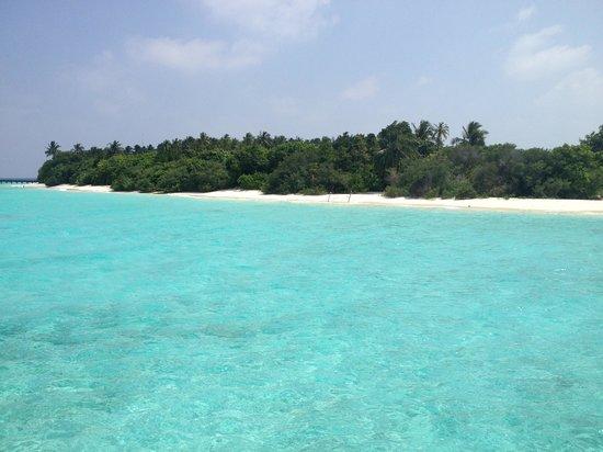 Dusit Thani Maldives:                                                       Beach