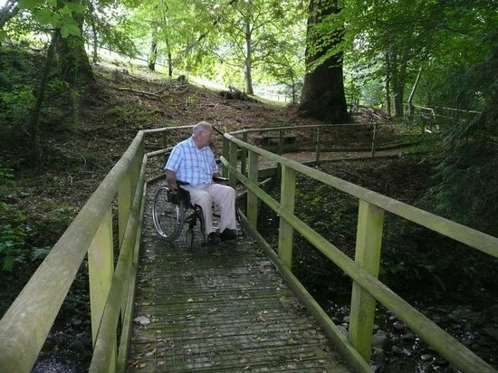 The Ty Glyn Davis Trust Holiday Centre and Gardens: Beautiful woodland walk with wheelchair access