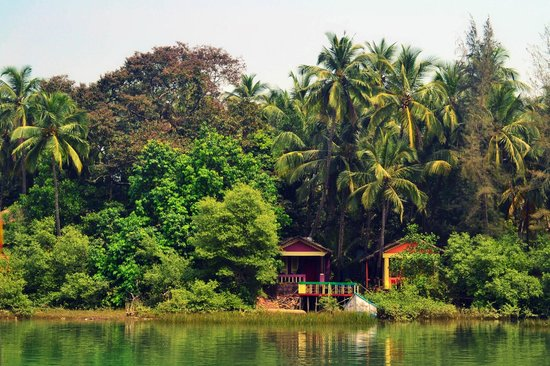 Canacona, India: Backwater ride at Palolem