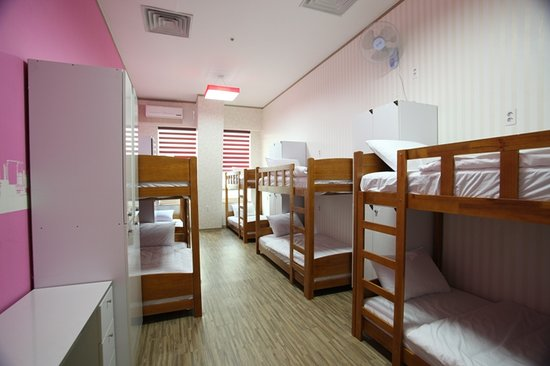 Terra Guesthouse: Dormitory