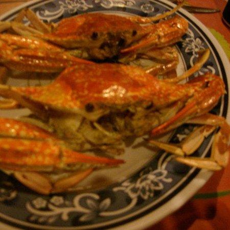Lucky Crab Photo