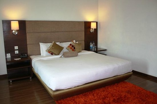 Country Inn & Suites By Carlson-Amritsar, Queens Road : deluxe room