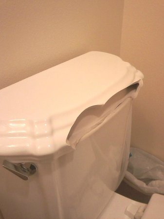 Arrow Point Condo :                                                       Toilet that broke and cut a guest's back w