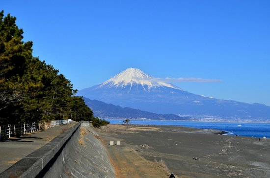 Miho Seacoast (Miho no Matsubara Beach):                   三保海岸遊歩道からの富士