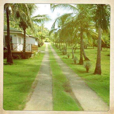 Playa Tranquilo:                   Der Hauptweg                 