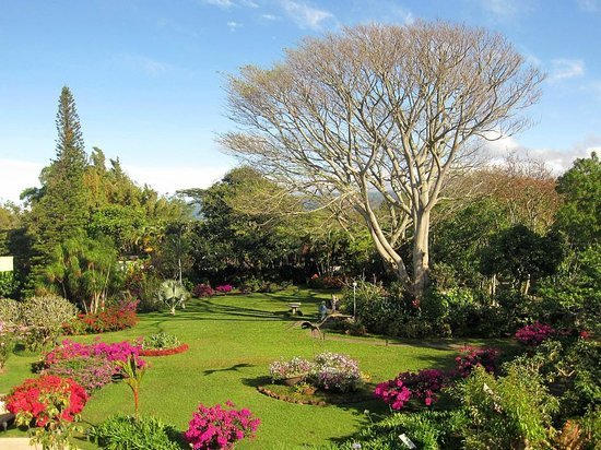 Hotel Bougainvillea:                   View overlooking the gardens