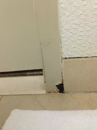 Moana Surfrider, A Westin Resort & Spa: Rusting door
