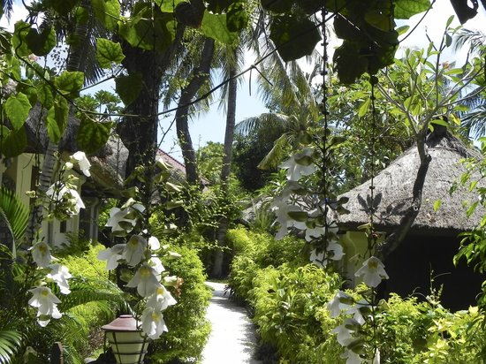 Mimpi Resort Tulamben:                   Mimpi resort
