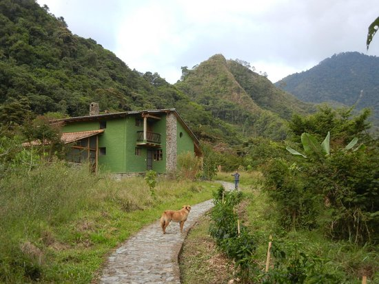 El Refugio de Intag Cloud Forest Lodge:                                     our guest house