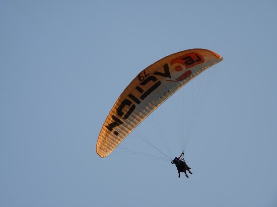 Re Action Paragliding:                                     REACTION PARAGLIDING.
