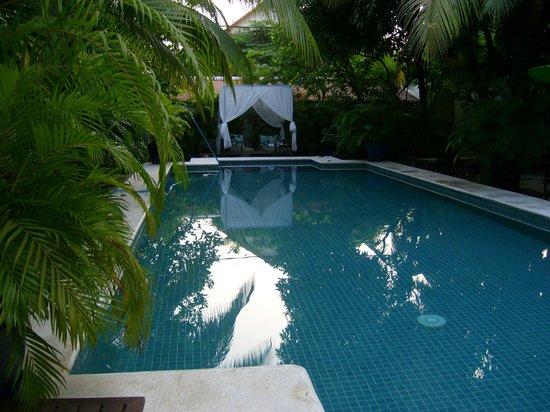 The Pavilion: la piscine