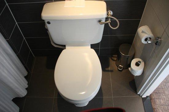 Hilton London Olympia:                   Toilet