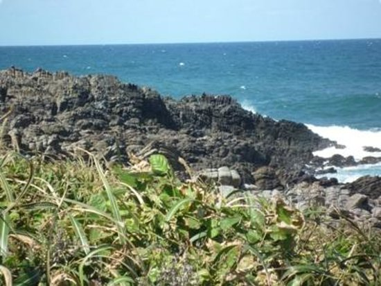 Oshima Island :                   雄島07