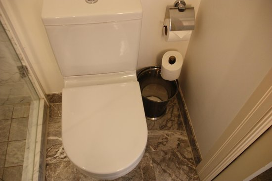 The Shelbourne Dublin, A Renaissance Hotel:                   Toilet
