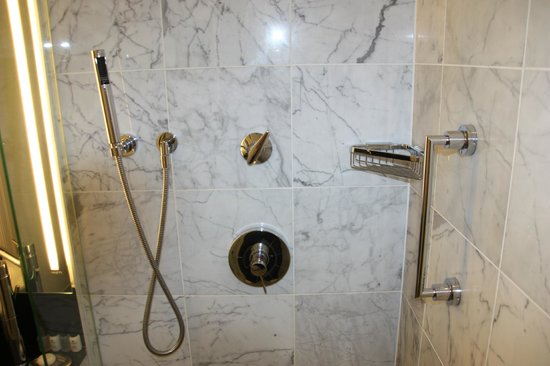 ‪‪The Shelbourne Dublin, A Renaissance Hotel‬:                   Shower