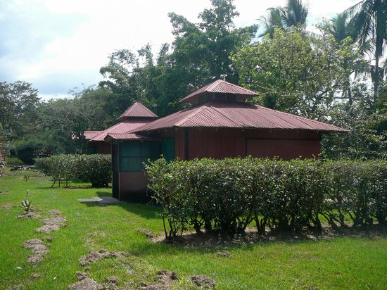 Veragua River House:                   The bungalows