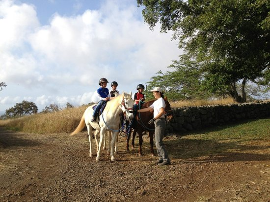 Puakea Ranch:                   Horseback ride