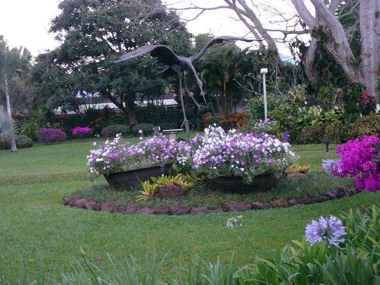 هوتل بوجين فيلي:                   The amazing gardens                 