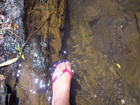 Parque Arqueológico Mina La Oriental:                   Agua natural, un gusto esquisito.