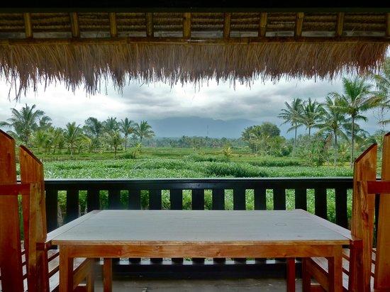 Green Orry Inn:                   View at the Rinjani