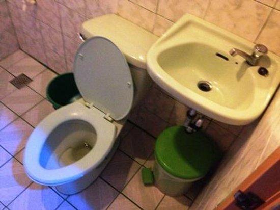 Shennas Beach Resort:                                     Bathroom