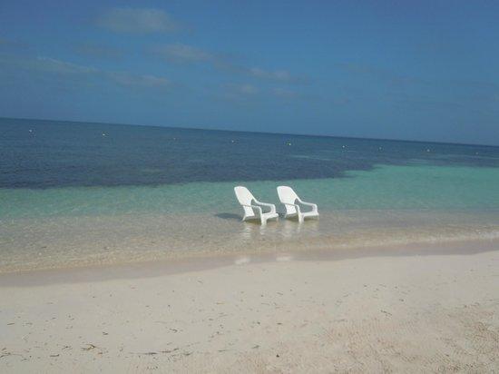 Decameron Isla Palma:                   Esta imagen es real!