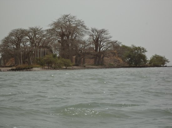 gambia experience: