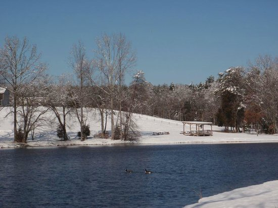 Small Country Campground: Snowy Lake View