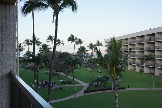 Maui Sunset Condos:                   View of grounds from the lanai