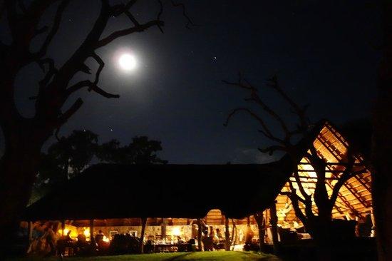 Bomani Tented Lodge:                                     Padiglione ristorante