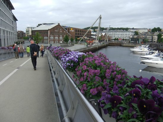 Radisson Blu Royal Garden Hotel, Trondheim: A short walk brings you to revamped port area with shopping malls and bars