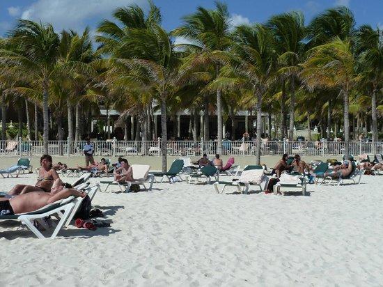 Hotel Riu Lupita:                   espace à la plage resto et bar au fond