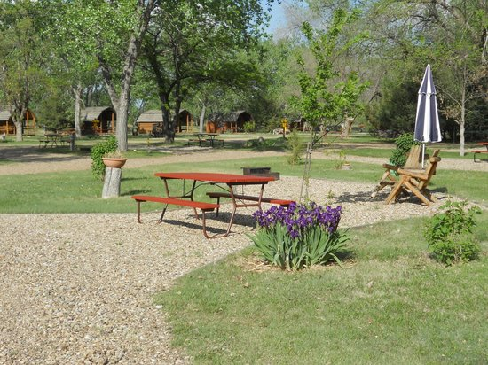 Badlands/ White River KOA: deluxe rv site