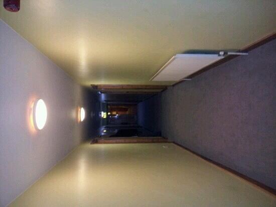 Camden Deluxe Hotel: Corridor, nice carpets