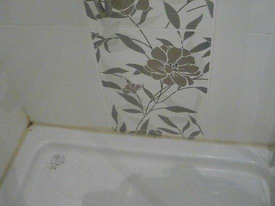 เบสท์เวสเทิร์น แอนที พาเลซ โฮเต็ล แอนด์ สปา:                                                       salle de bain