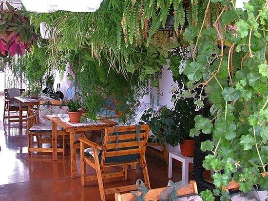 Apartamentos Gelimar: Reception
