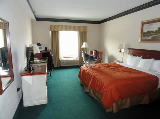Country Inn & Suites By Carlson, Chattanooga I-24 West:                   Room 224