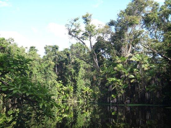 Honduras:                                     Paysage inoubliable