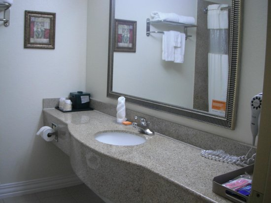 La Quinta Inn & Suites St. Petersburg Northeast: salle de bain