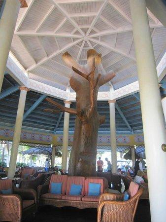 Melia Cayo Santa Maria: Lobby area