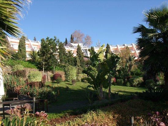 Quinta Do Estreito:                   L'Hôtel et son parc au mois de Janvier...