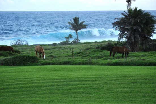 Travaasa Hana, Maui:                   View from our ocean view cottoage