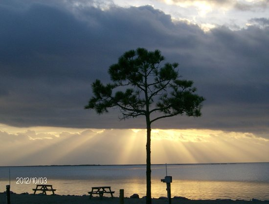 Carrabelle, FL:                                     Amazing Beauty