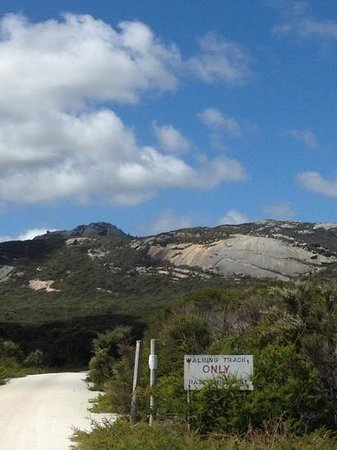 Flinders Island, Austrália: Big River Road Start of Strzekecki Explorer half Day Quad Bike Tour with Flind