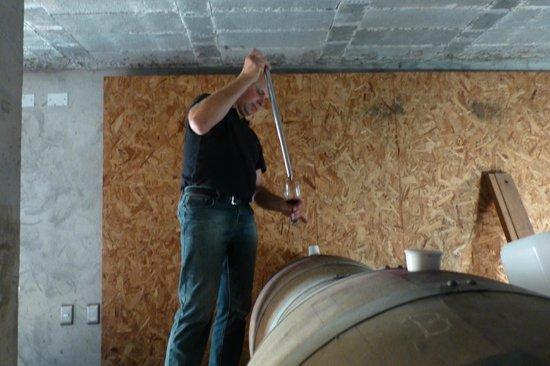 Vina Chillan:                   rudolf offers us wine to taste