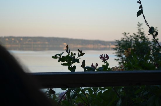 Camano Island Inn: Beautiful early morning view from room.