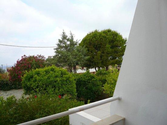 Lemon Tree Apartments:                                     First floor room view