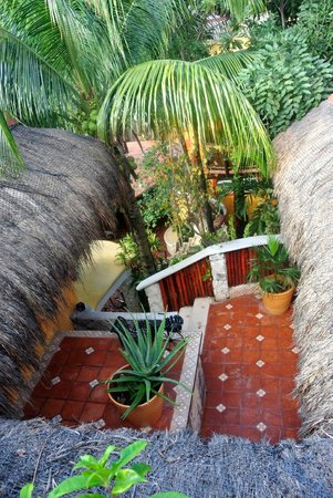 Maison Tulum:                   Looking down from the roof