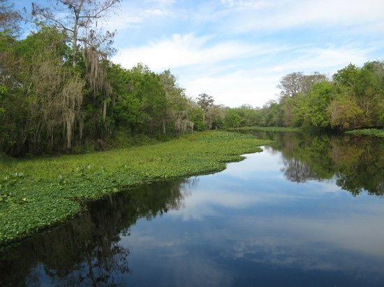 Blue Heron River Tours: mirror like conditions