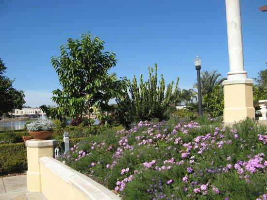 Hollis Garden: varied plantings